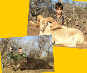 Action and Adventures Ram and Hog Hunt