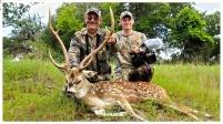 axis_buck_l-l-adventures-texas
