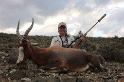 blesbuck-gamka-safaris-hunting-western-cape_-56
