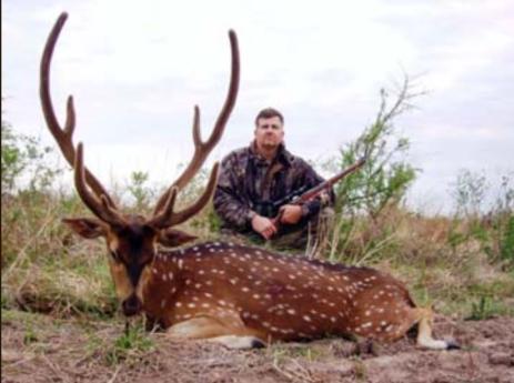 Axis-deer-Anuritay-Argentina