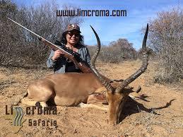 Impala-Limcroma