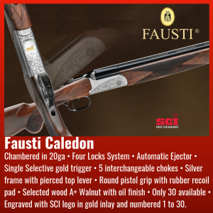 fausti-sci-shotgun-of-the-year-2019
