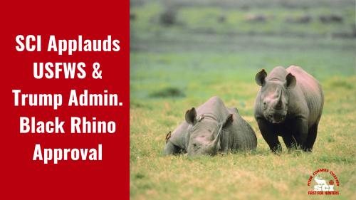 SCI-Applauds-USFWS-Trump-Admin-Black-Rhino-Approval